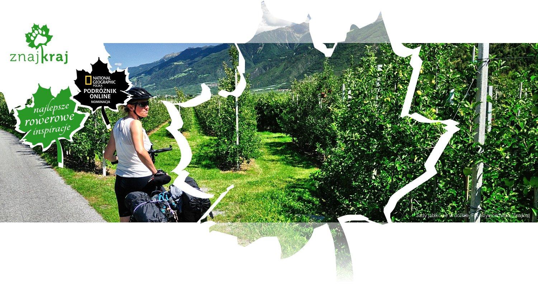 Sady jabłkowe w dolinie