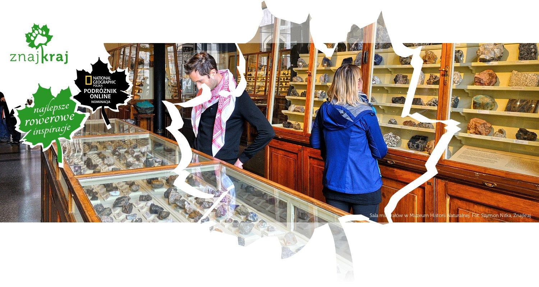 Sala minerałów w Muzeum Historii Naturalnej