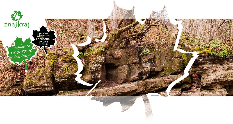 Skały w rezerwacie Sine Wiry w Bieszczadach