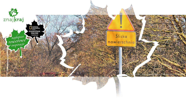 Śliska nawierzchnia - znak na drodze rowerowej