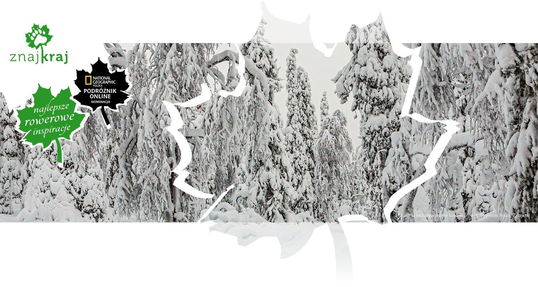 Śnieżne kształty drzew koło Ruki