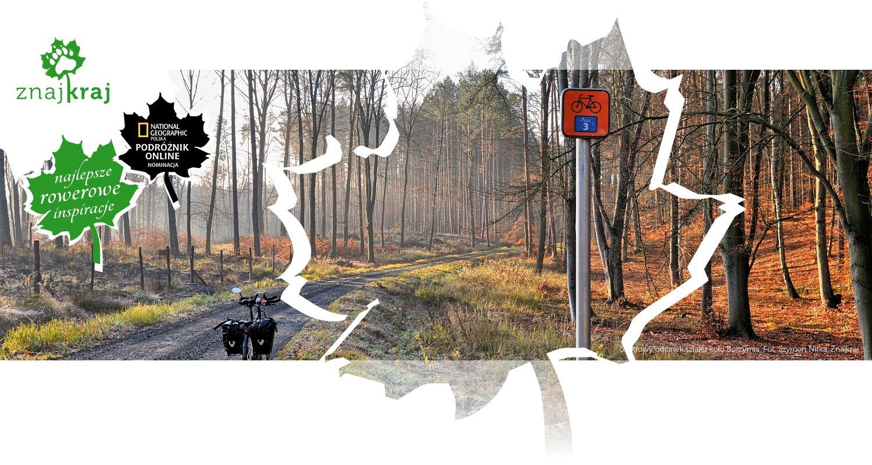 Szutrowy odcinek szlaku koło Borzymia