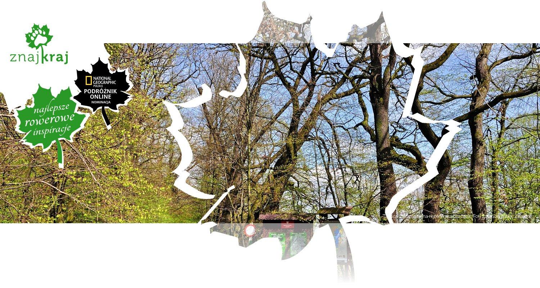 Tablica informacyjna rezerwatu Łężczok