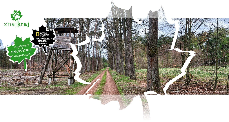 W kierunku Kuźni Raciborskiej