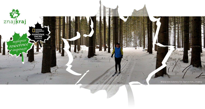 W lesie koło Zuberzca