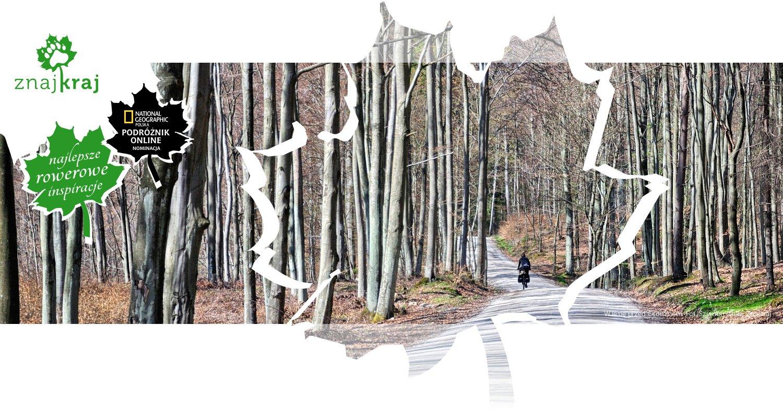W lesie przed Otominem