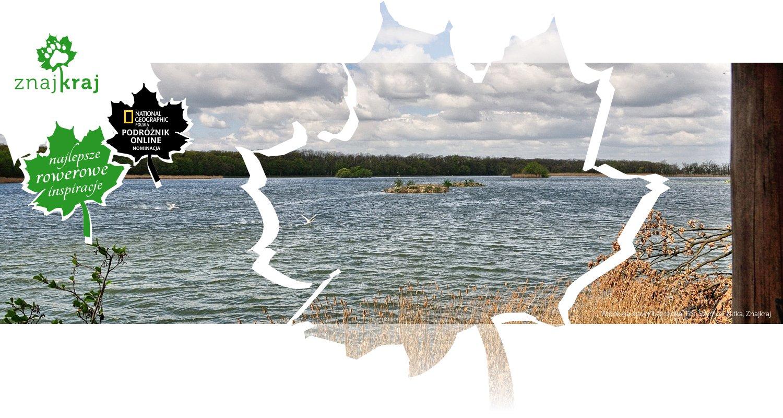 Widok na stawy Łężczoka