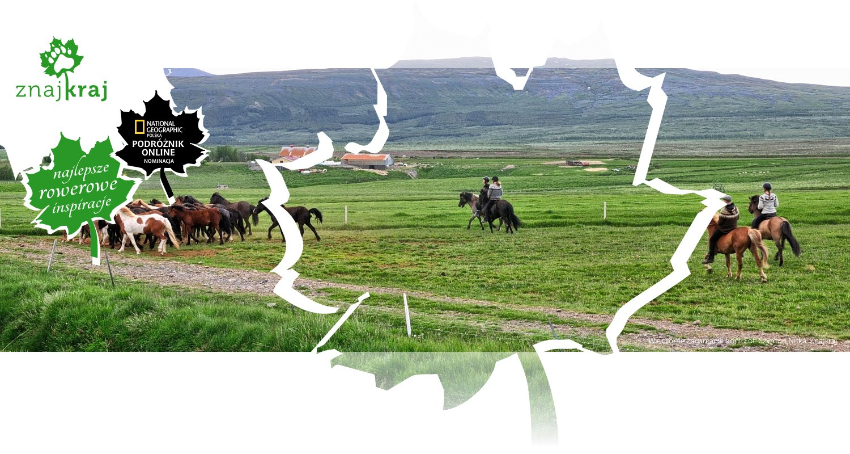 Wieczorne zaganianie koni