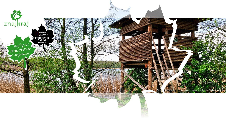 Wieża obserwacyjna w rezerwacie Łężczok