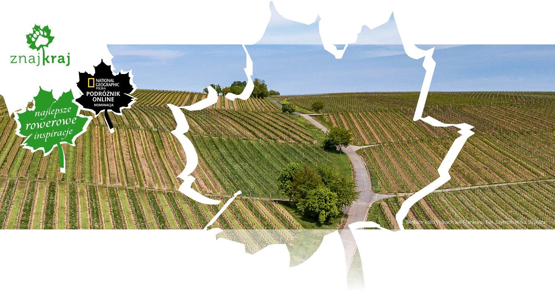 Winnice koło Volkach we Frankonii