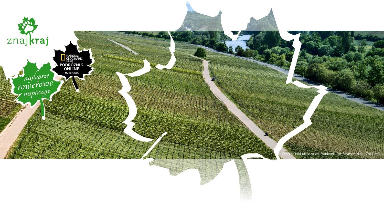 Winnice nad Menem we Frankonii