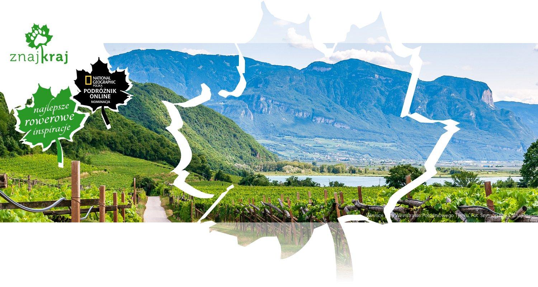 Winnice przy Weinstrasse Południowego Tyrolu