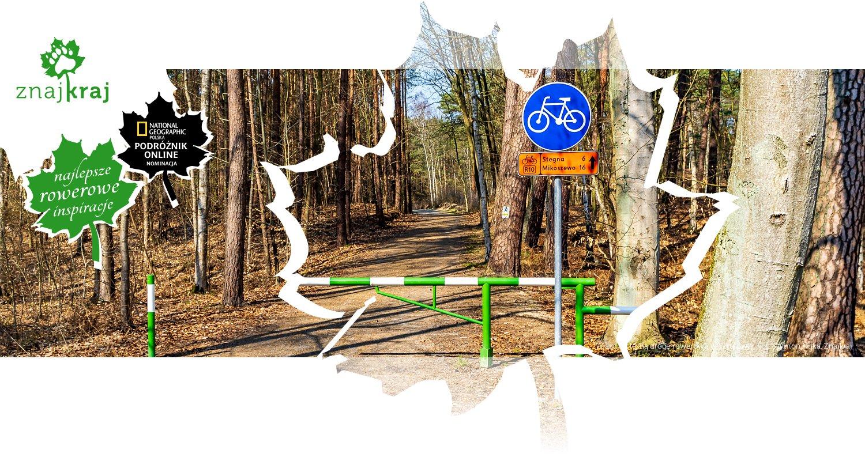 Wjazd na leśną drogę rowerową w Sztutowie