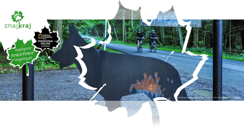 Wokół drogi rowerowej na Bornholmie