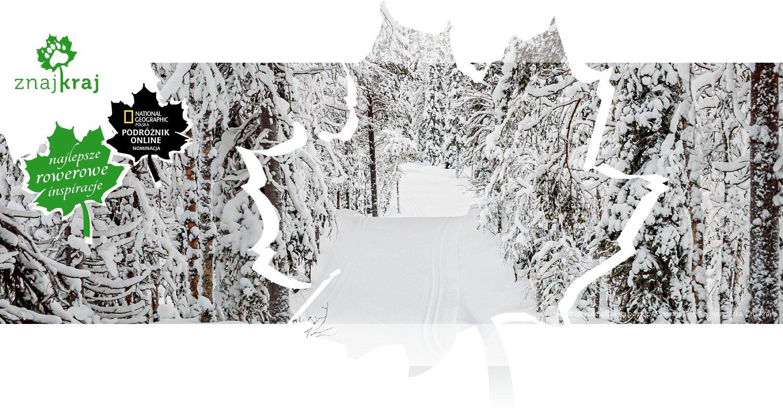 Zimowa trasa narciarska na północy Finlandii