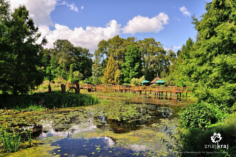 Arboretum w Bolestraszycach