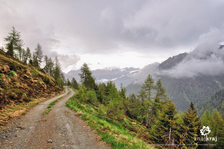 Droga ku przełęczy Passo Cinque Croci