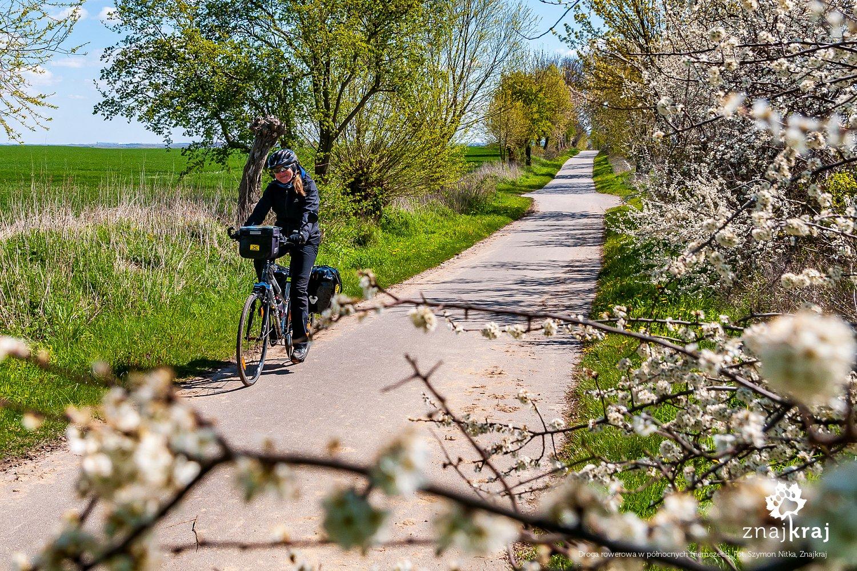 Droga rowerowa w północnych Niemczech
