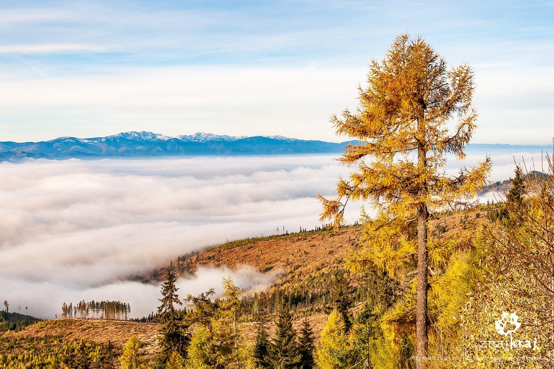 Morze mgły i inwersja termiczna nad Kotliną Liptowską