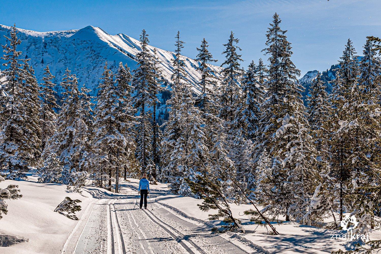 Na trasie biegowej w Vorarlbergu w Austrii