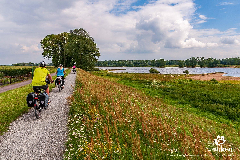 Rowerzyści na drodze rowerowej wzdłuż Łaby