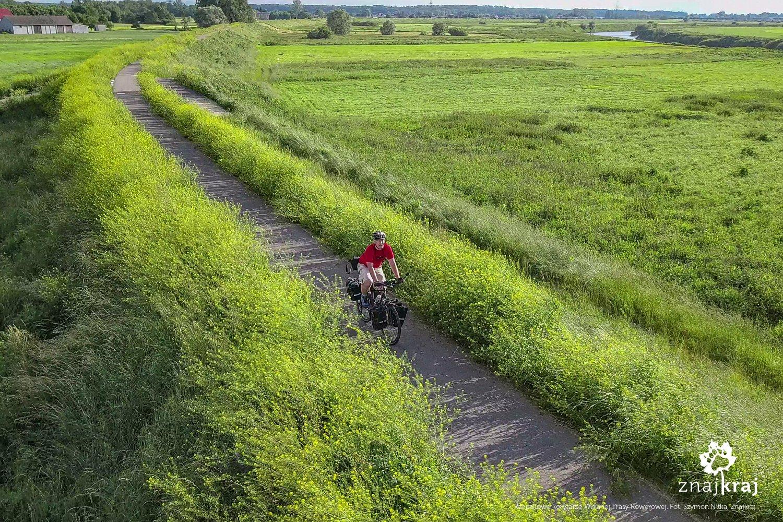 Rzepakowe korytarze Wiślanej Trasy Rowerowej