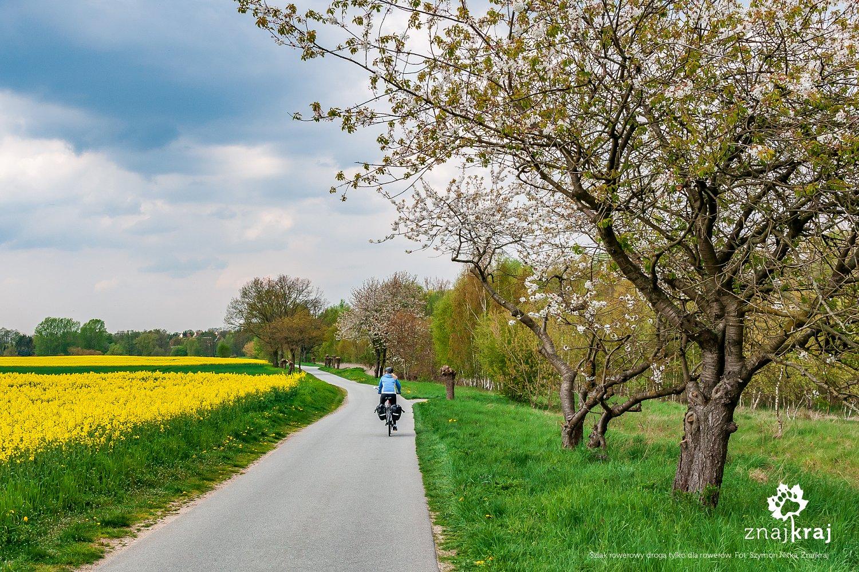 Droga tylko dla rowerów w Niemczech