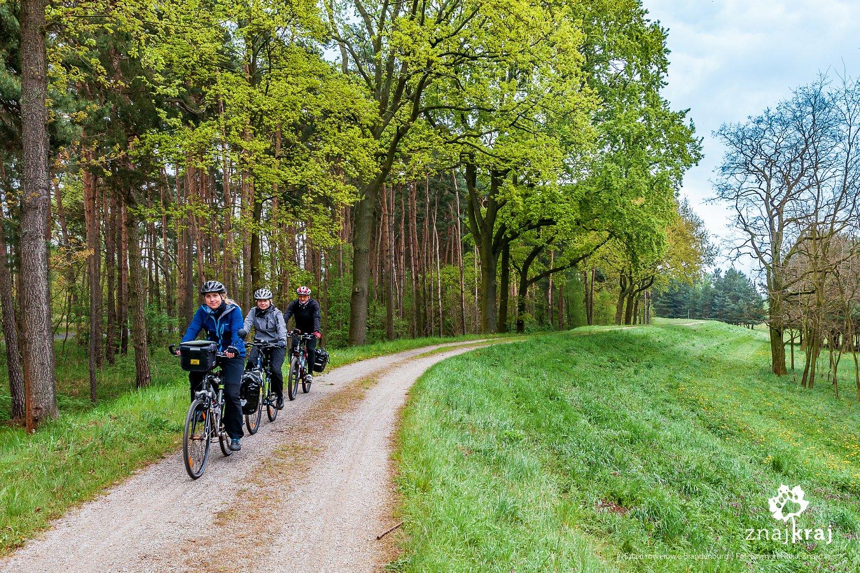 Na szlaku rowerowym w Brandenburgii