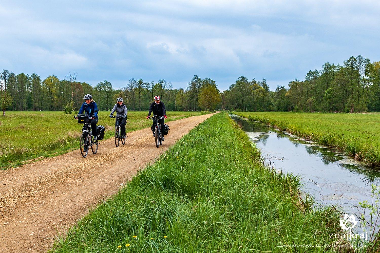 Trasa rowerowa w Spreewaldzie