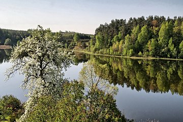 Jezioro Żabi Róg