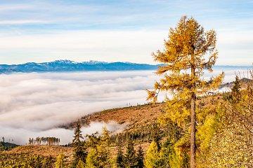Mgły nadKotliną Liptowską