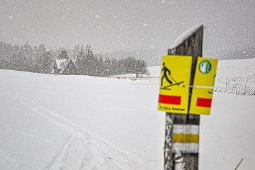 Śnieżyca przed schroniskiem PTTK w Pasterce