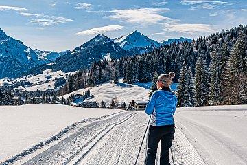 Widok na dolinę Kleinwalsertal w Austrii